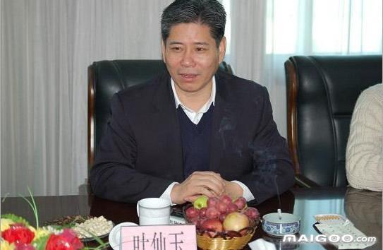 叶仙玉-星星集团有限公司总裁介绍