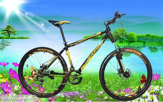 圣希沃自行车 带你玩转绿色东丽湖